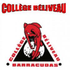 "College Beliveau ""College Beliveau Barracudas"" Temporary Tattoo"