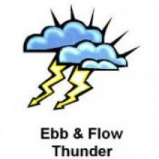 """Ebb & Flow School """"Thunderbirds"""" Temporary Tattoo"""