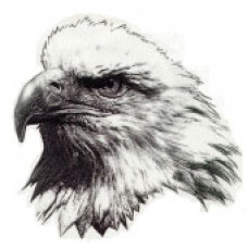 """Glenella School """"Eagles"""" Temporary Tattoo"""