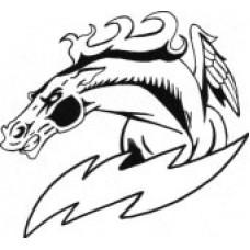 "Lac Du Bonnet Senior ""Chargers"" Temporary Tattoo"