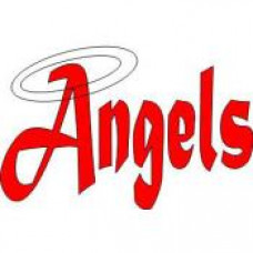 "Goose Lake High School ""Angels"" Temporary Tattoo"