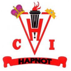 "Hapnot Collegiate ""Kopper Kings Kopper Queens"" Temporary Tattoo"