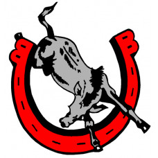 "Bedford High School ""Kicking Mules"" Temporary Tattoo"