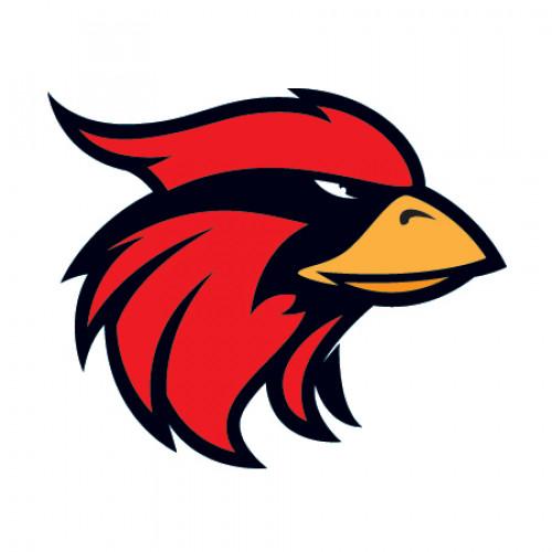 Cardinal Mascot Temporary Tattoo