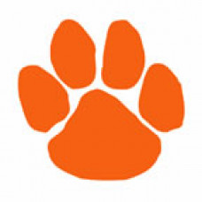 Orange Paw Print Temporary Tattoo